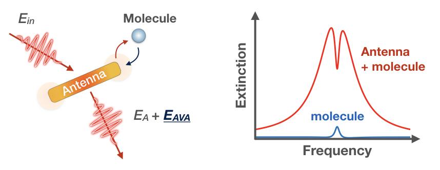 Antenna-molecule